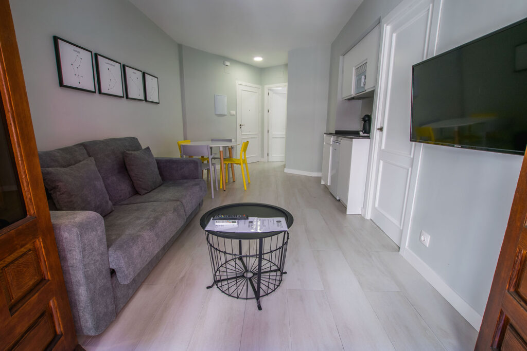 apartamentos-plaza-nueva-suite-11-en-granada (3)